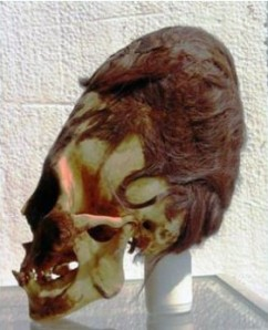 A Paracas Necropolis Culture skull with hair